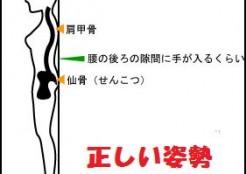 zakotusinkeitu-shisei